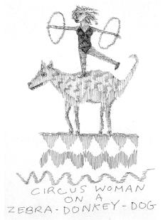 zebra donkey dog